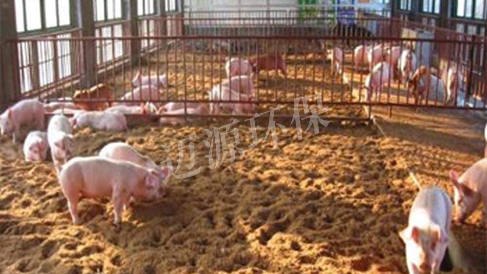 养猪场污水处理方案